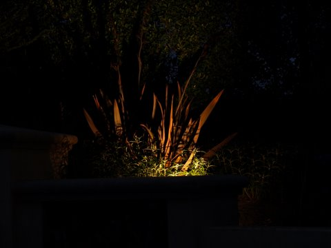 Westlake Village Landscape Lighting Dramatic Lighting