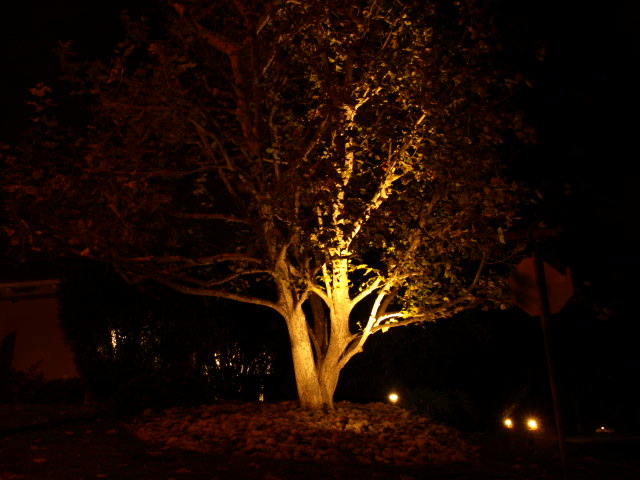 Westlake Village Landscape Lighting Landscape Lighting