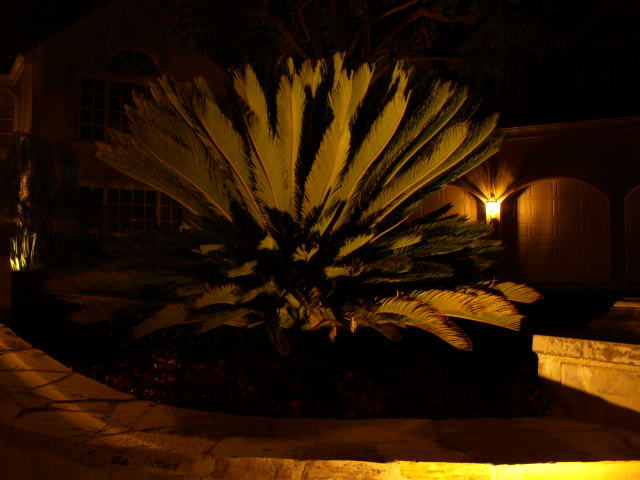 Westlake Village Landscape Lighting